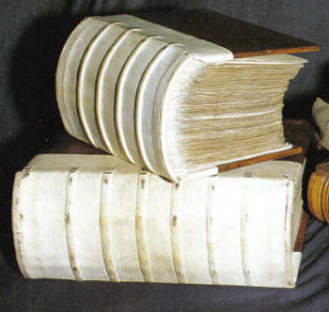 Original Domesday book(s)